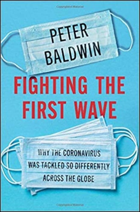 Fighting the First Wave Why the Coronavirus Was Tackled So Differently Across the Globe