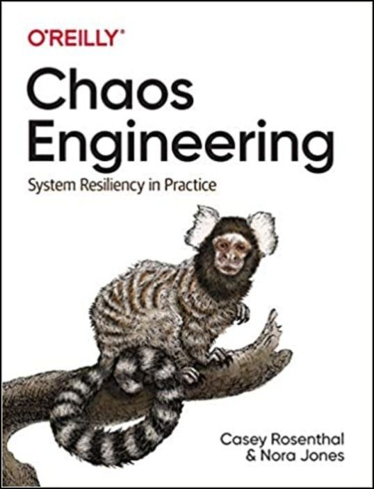 Chaos Engineering. System Resiliency in Practice
